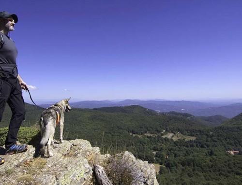 Naturerlebnis pur: Dein Abenteuer mit Hund durch´s wilde Katalonien.