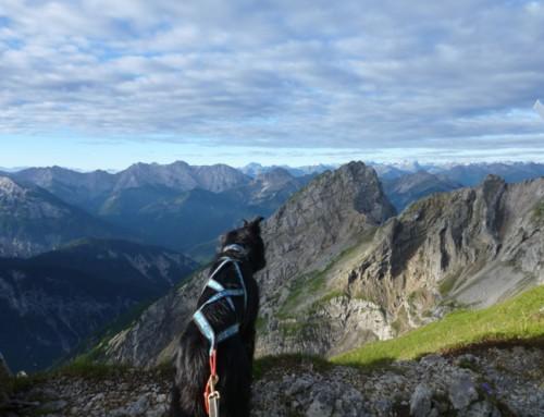 """Karwendel Dogtrekking 2017 oder """"Der Fluch der Ausrüstung"""""""