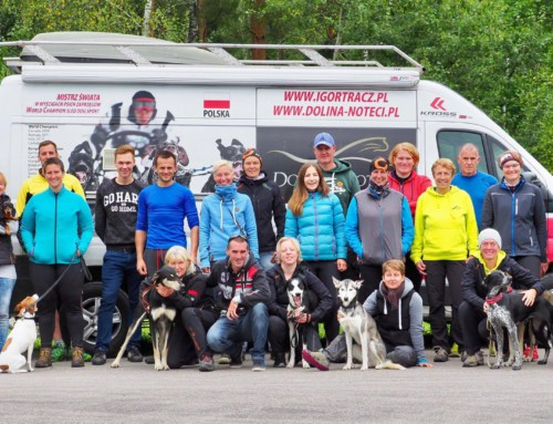 Zughunde-Trainings Camp mit den Weltmeistern
