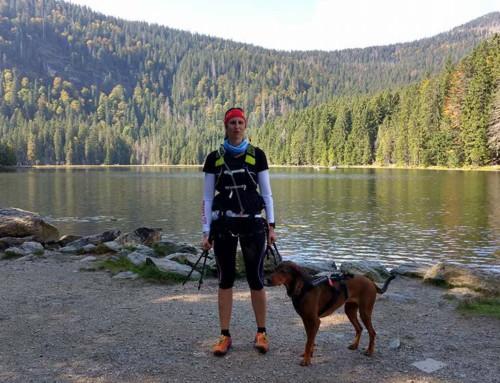 Trailrunning mit Hund beim Arberland Ultratrail 2017