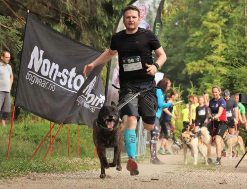 Canicross extrem: Das DOG EPIC Race 2018