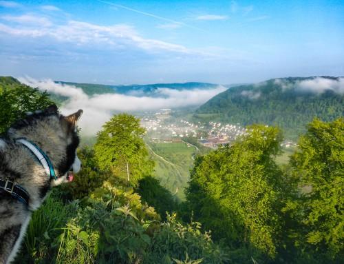 Alb-Traum100: Auf TRAUMhaften Pfaden 57 bzw. 115 Kilometer über die Schwäbische ALB