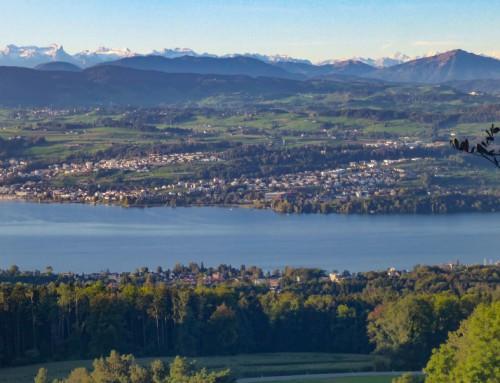 Totally freaked out! Dogtrekking Schweiz 2019.