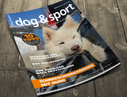 dog & sport 1/20