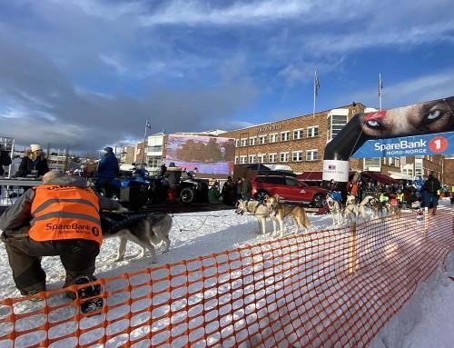600 Kilometer beim nördlichsten Schlittenhunderennen der Welt